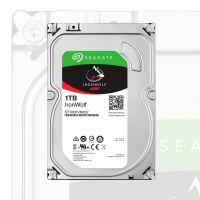 Luces sonido Disco Duro Ironwolf 1TB Seagate